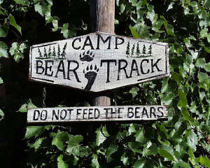 campbeartrack.jpg